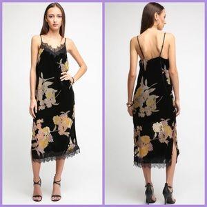 Band of Gypsies Floral Velvet Burnout Slip Dress